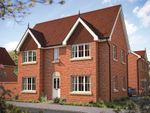 "Thumbnail to rent in ""The Woburn"" at Foxhall Road, Ipswich"