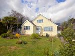 Thumbnail for sale in Gladelands Way, Broadstone