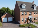 Thumbnail for sale in Harlequin Drive, Spalding