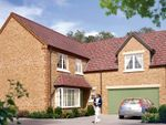"Thumbnail to rent in ""The Langham"" at Boughton Road, Moulton, Northampton"