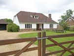 Thumbnail for sale in St Leonards, Ringwood, Hampshire
