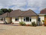 Thumbnail to rent in Dilly Lane, Barton On Sea, New Milton