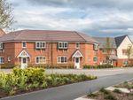 "Thumbnail to rent in ""Faringdon II"" at Robell Way, Storrington, Pulborough"
