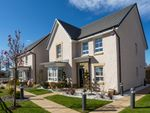 "Thumbnail to rent in ""Balbardie"" at Glassford Road, Strathaven"
