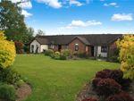 Thumbnail for sale in Jarmans Field, Wye, Ashford, Kent