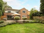 Thumbnail for sale in Michelet Close, Lightwater, Surrey