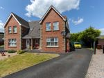 Thumbnail for sale in Lansdowne Drive, Newtownards