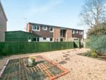 Thumbnail to rent in Badgers Way, Loxwood, Billingshurst