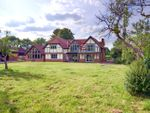 Thumbnail to rent in West Horsley, Nr Guildford, Surrey