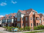 Thumbnail to rent in Harold Grove, Frinton-On-Sea