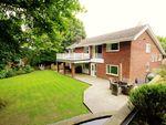 Thumbnail to rent in Burnside, Witton Gilbert, Durham