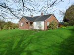 Thumbnail for sale in Kirkdale, Kirkcambeck, Brampton, Cumbria