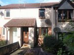 Thumbnail to rent in Arns Grove, Alloa