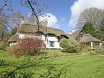 Thumbnail for sale in Highwood, Ringwood, Hampshire