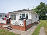 Thumbnail to rent in Park Lane, Pagham