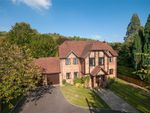 Thumbnail for sale in Tree Way, Reigate, Surrey
