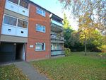 Thumbnail to rent in Ives Road, Norwich