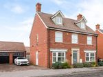 Thumbnail for sale in Buttercup Road, Stotfold, Hitchin, Herts