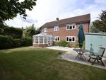 Thumbnail for sale in Marlston Road, Hermitage, Thatcham, Berkshire