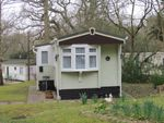 Thumbnail to rent in Upper Holton, Halesworth