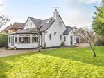 Thumbnail to rent in St Winifreds Road, Harrogate, North Yorkshire