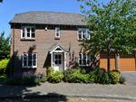 Thumbnail to rent in Shepherds Way, Everton, Lymington