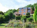 Thumbnail to rent in 48 West Malvern Road, Malvern