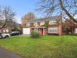 Thumbnail to rent in Pine Walk, Cobham, Surrey