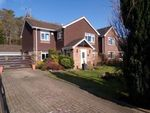 Thumbnail for sale in Ashurst, Southampton, Hampshire