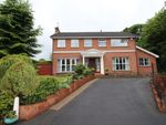 Thumbnail to rent in Richmond Court, Lisburn
