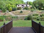 Thumbnail to rent in Sydenham Damerel, Tavistock