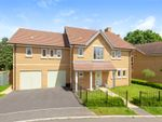 Thumbnail for sale in Endeavour Avenue, Exeter