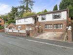 Thumbnail to rent in Finchley Vale, Belmont, Belfast