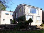Thumbnail to rent in Redmoor Close, Tavistock