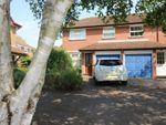 Thumbnail to rent in Haydock Close, Alton, Hampshire