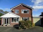 Thumbnail to rent in 11, Harrison Drive, Caerhowel, Montgomery, Powys
