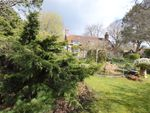 Thumbnail to rent in Forestside, West Sussex