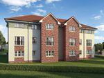 """Thumbnail to rent in """"Chisholm"""" at Cherrytree Gardens, Bishopton"""