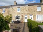 Thumbnail to rent in Stone Row, Grange Villa, Chester Le Street