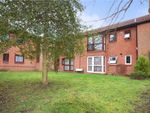 Thumbnail for sale in Bruntile Close, South Farnborough, Hampshire
