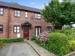 Thumbnail to rent in Chestnut Drive, Stone, Staffordshire