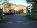 Thumbnail to rent in Dovedale Close, Ingol, Preston