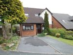 Thumbnail to rent in Campion View, Woolwell, Plymouth