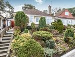 Thumbnail to rent in Lascelles Road, Bournemouth