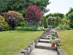 Thumbnail for sale in Rotherfield Crescent, Brighton