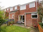 Thumbnail to rent in Pelton Mews, Pelton, Chester Le Street
