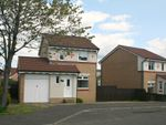 Thumbnail for sale in Mcmahon Drive, Newmains, Wishaw