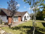 Thumbnail to rent in Spencer Road, Ryde