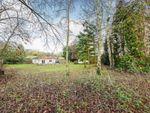 Thumbnail for sale in Newnham Valley, Newnham, Sittingbourne