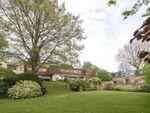 Thumbnail for sale in Oak Hill Park, Hampstead, London